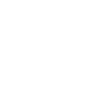 US District Court Eastern District of Texas | Medallions | McKay Law